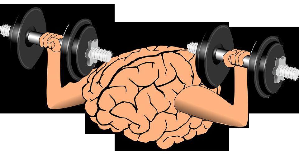 פעילות גופנית וחוסן
